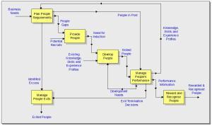 HR Process Model