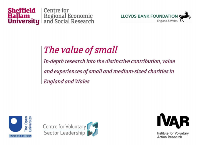 Value of Small Charities Report